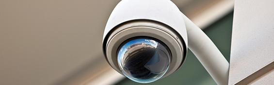 Business security cameras are just part of Vector's business video surveillance system.