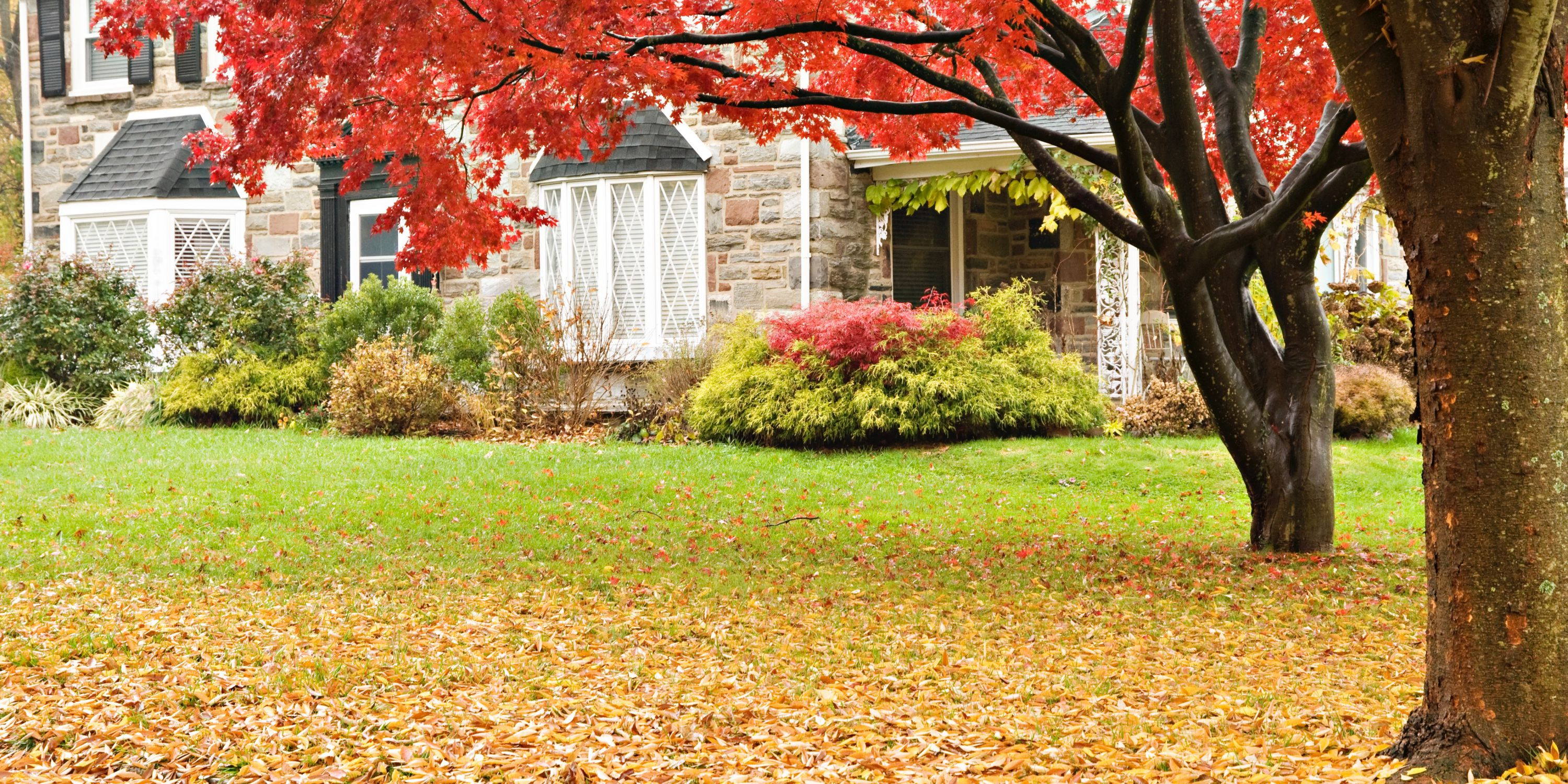 How to Maintain Home Security this Autumn