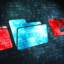 Network Encryption: Enhance Business Data Security